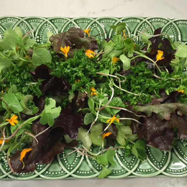 Baby curly red lettuce, crunchy celery, chopped parsley with a sprinkle of baby radish micro greens and marigold petals.  Autumn Perfection.