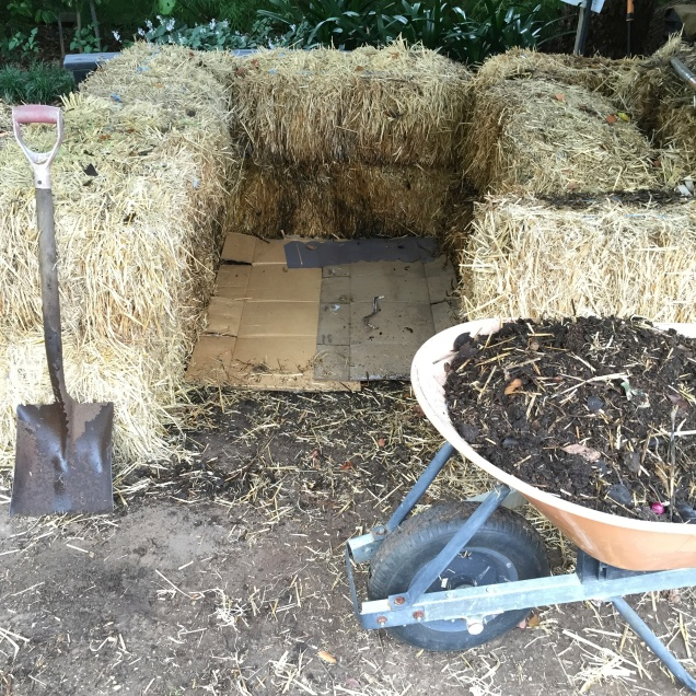 A barrow load of compost ready to spread and the hay bale enclosure ready for the new 'hot' compost heap.