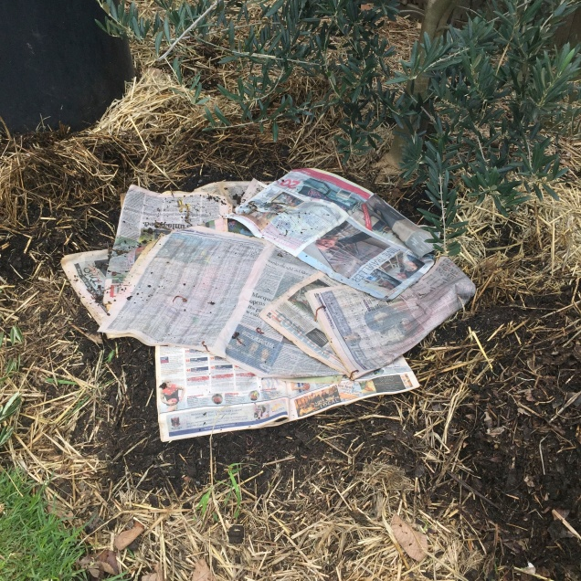 Spread dampened newspaper or cardboard over the soil before putting the bin in place, this will help level the bin and create a graded layer when the mix is ready to be collected.